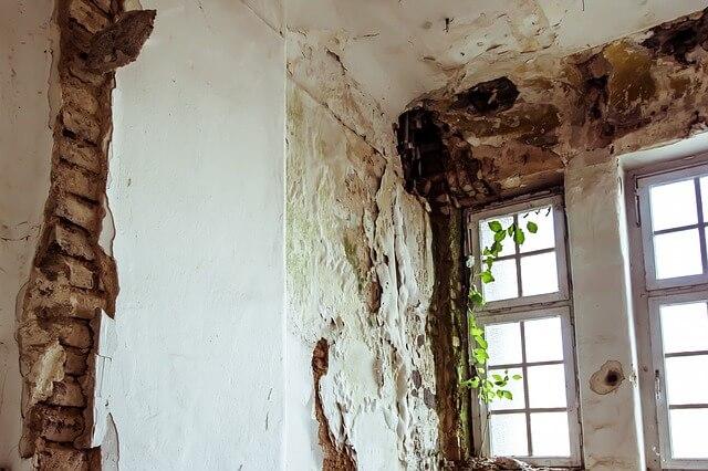 Grzyb na ścianie – ocet lub soda